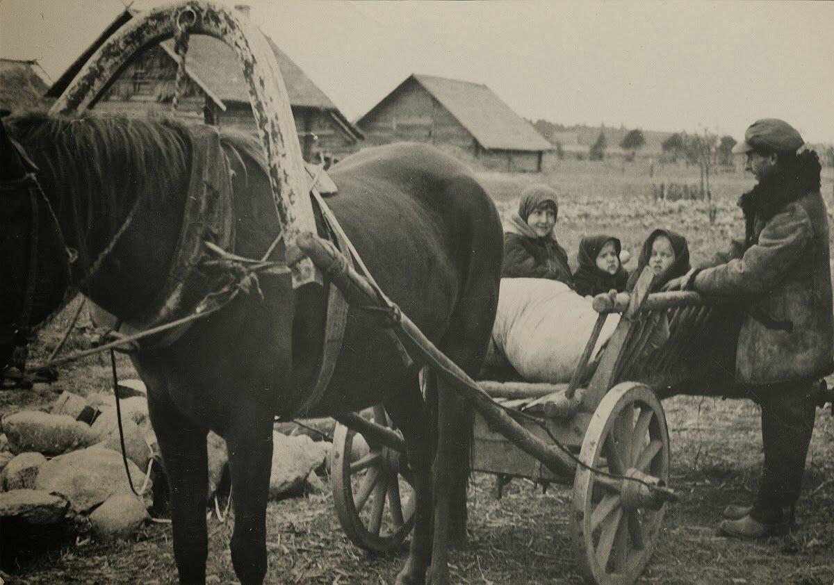 С поля возили картошку,на возе две близняшки, Фото Семака Франца 1937