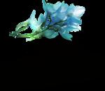 ldavi-shadowedflowers-delphinium8.png