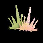 MKDesigns_SpringThings_ep (43)sh.png