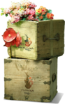ldavi-bunnyflowershop-flowerboxes2c.png