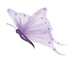 purple-butterfly1.png