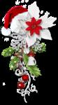 White_Christam_MoleminaScrap_cluster (2).png