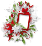 White_Christam_MoleminaScrap_cluster (9).png