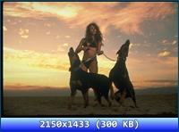http://img-fotki.yandex.ru/get/6423/13966776.14f/0_8f900_811b6a8a_orig.jpg