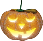 NLD Pumpkin (3).png