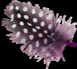 MyPassion_ViolettDesign_el (45).png