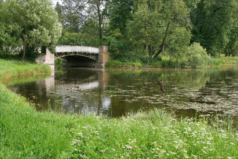 Павловский парк, Розовопавильонные пруды, мост Олений