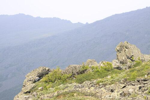 Долина реки Серебрянки