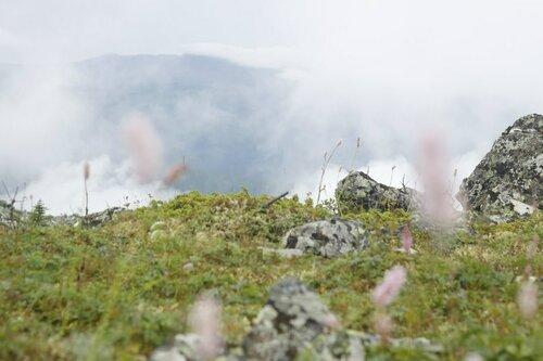 На вершине Ощего камня