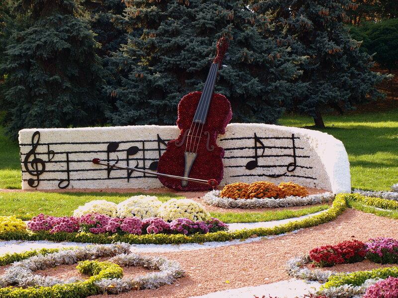 Выставка хризантем-2012 Киев