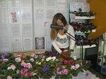 Выставка фиалок осень 2012 Могилев