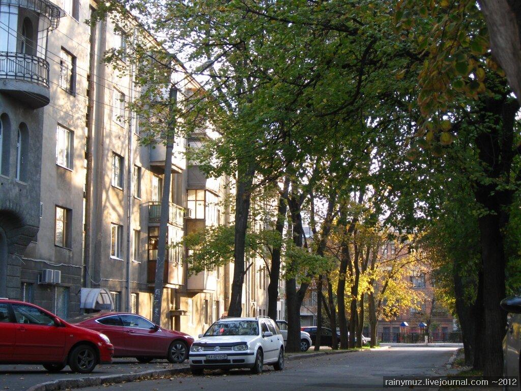 Мальовнича і спокійна вулиця дарвіна