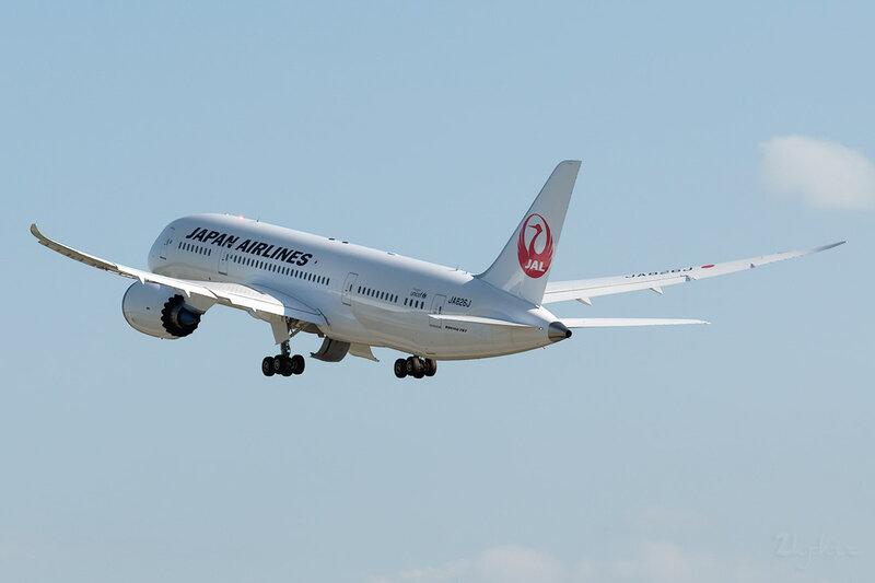 Boeing 787-846 (JA826J) JAL DSC0314