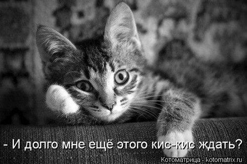 http://img-fotki.yandex.ru/get/6424/194408087.1/0_8fc10_48f83566_L.jpg