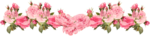 PINK ROSES.png