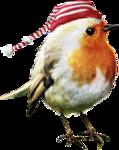 ldavi-feathersandmittens-littlerobin3.png