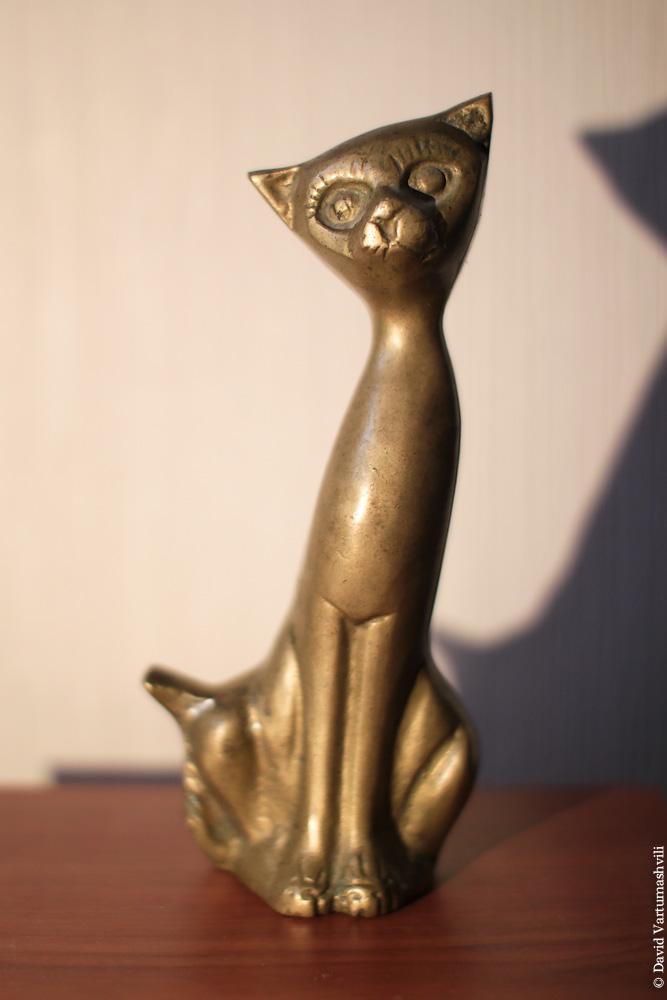 Малийский кот