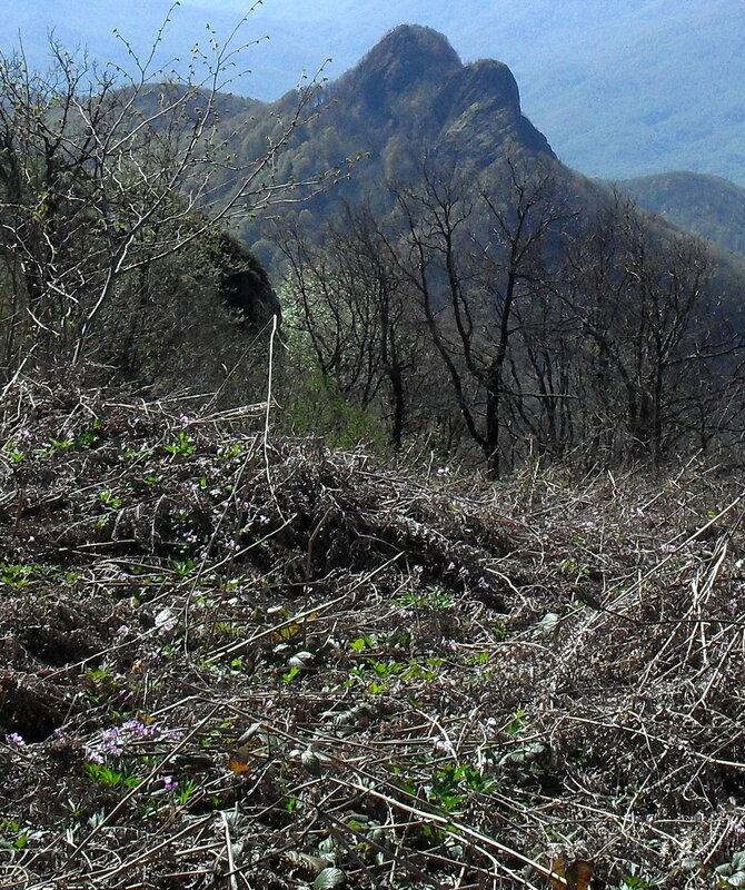 Тропа на Семашхо, апрель 2010