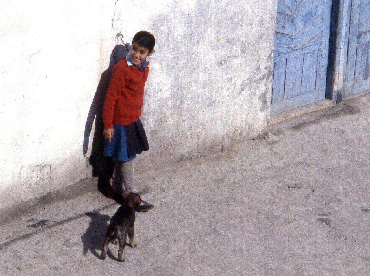 Девочка с собакой в Ташкенте