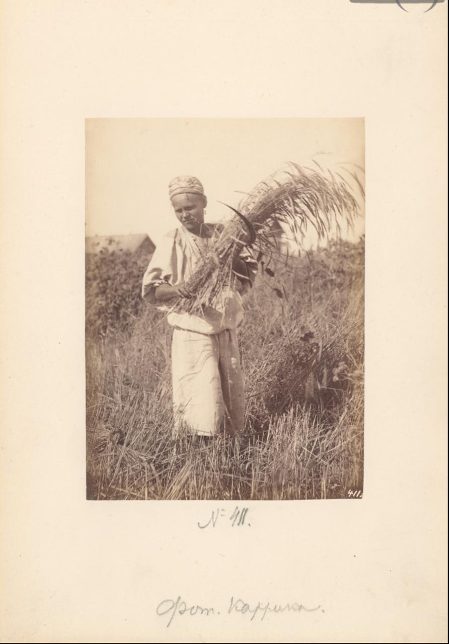 Жница.— [1870-е]