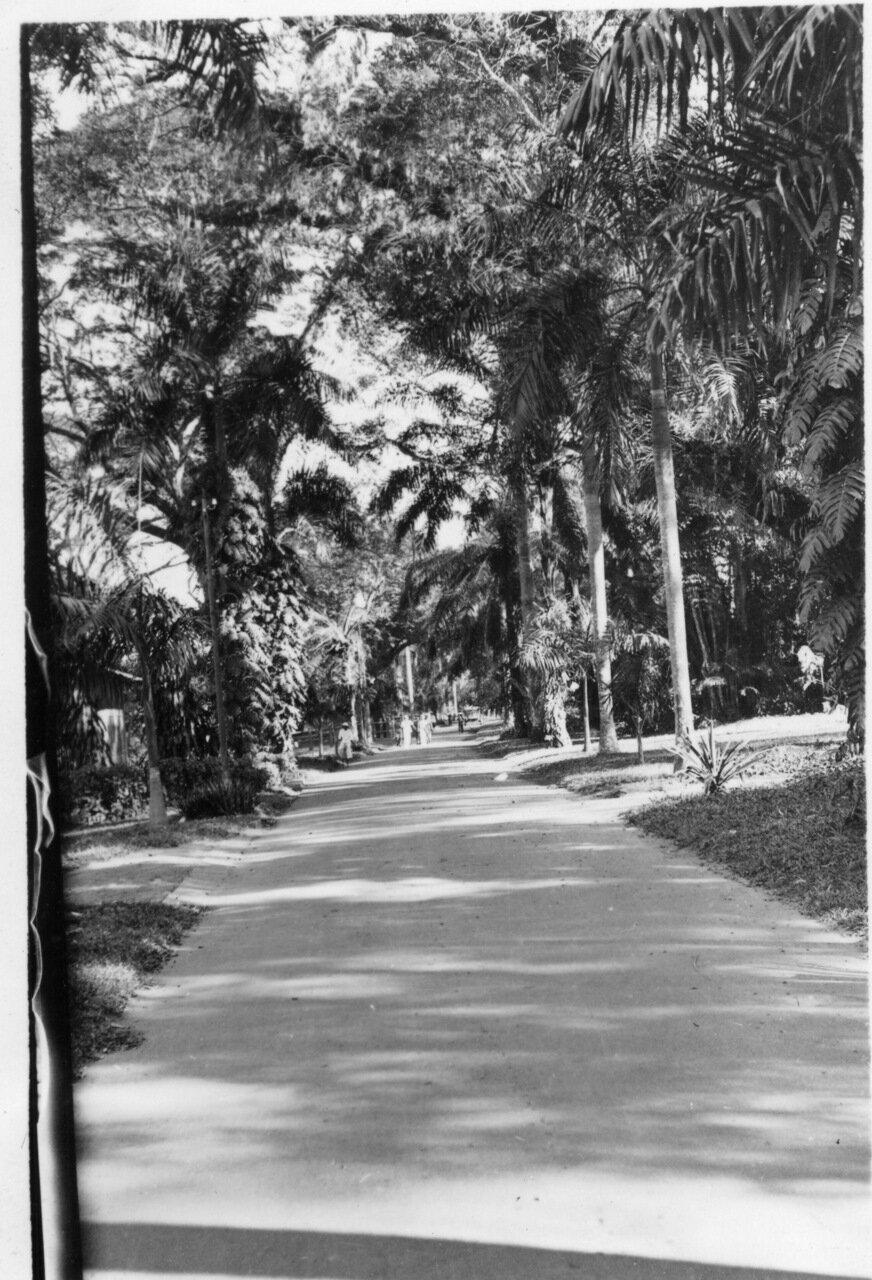 В парке Сайгона