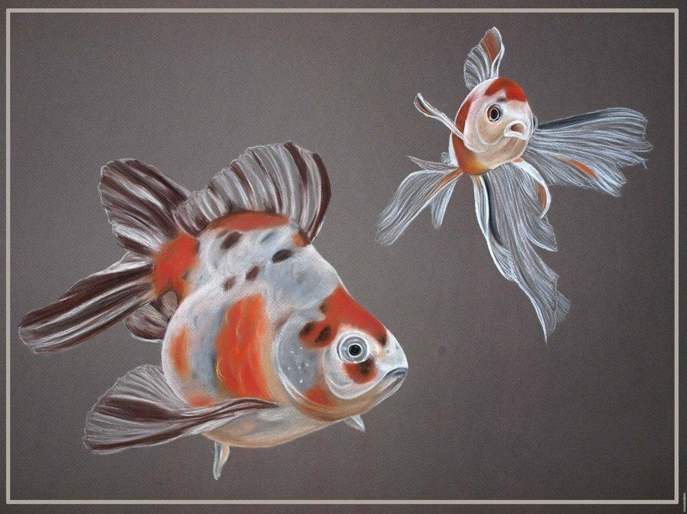 Водный мир, рыбы: акулы, дельфины, черепахи, осьминоги, кальмары, медузы, морские звезды стр. 3. Эскизы татуировок, картинки тат