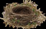 EasterOnTheFarm_Element01 (12).png