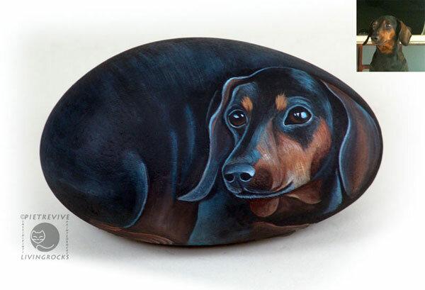 изображение собаки на камне