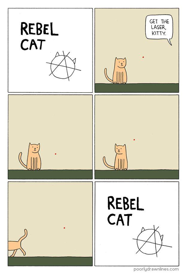 Смешные комиксы про котов на английском языке 0 c6da0 18e3f09f orig