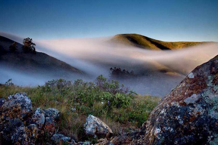 Красивые фотографии тумана в Сан Франциско, США 0 142290 6a5ab7d8 orig