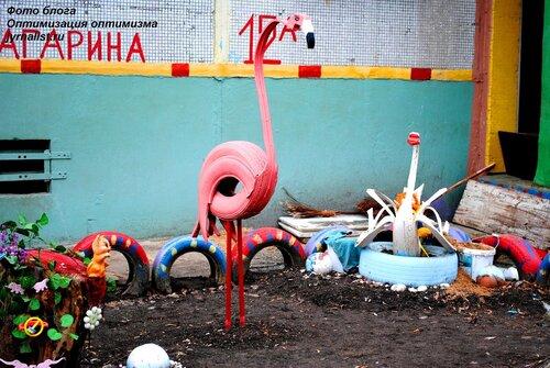 розовый фламинго фото оптимизация оптимизма