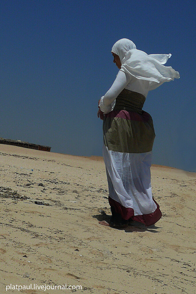 Египет 2012
