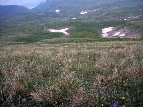 Поход на Фишт, в лугах плато Лагонаки, фотографии Виталия Жигулина