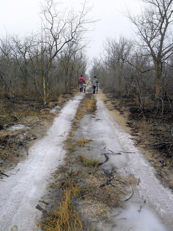 В зимнем лесу, велопоход