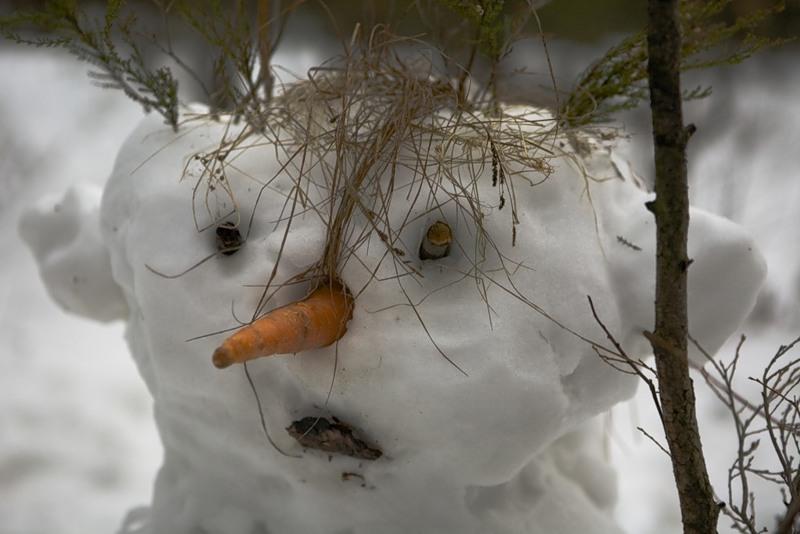 Зачем лепят снеговика?