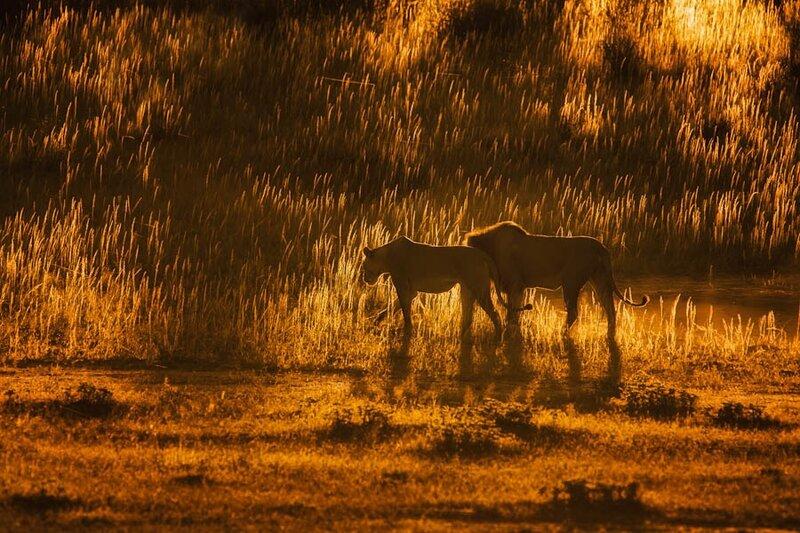 Фотограф Mario Moreno