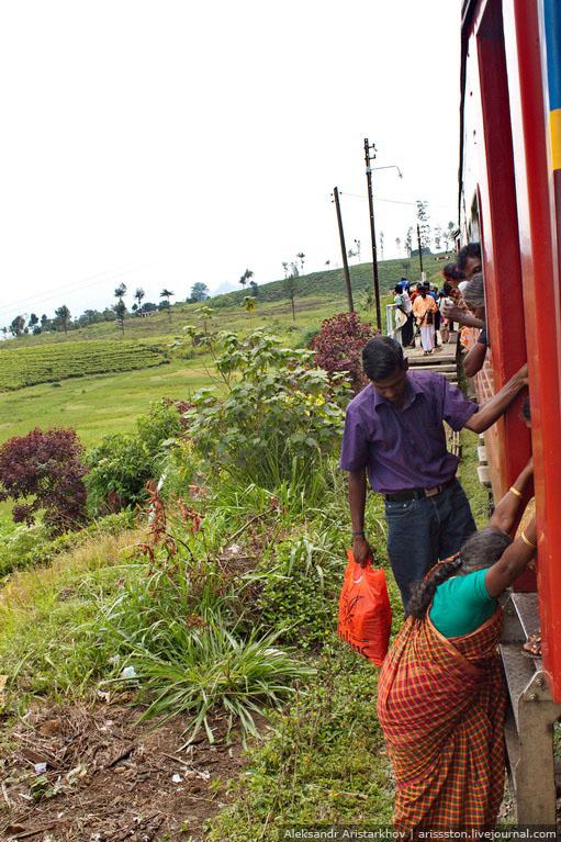 Шри-Ланка_Как угнать поезд_09
