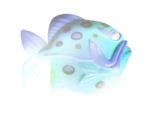 Ocean Treasures (6).png