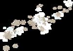 white winter_etdesigns (69).png
