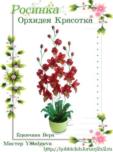 """Галерея работ творческой мастерской """"Орхидея Красотка"""" 0_12ea2d_7ec40e3f_L"""