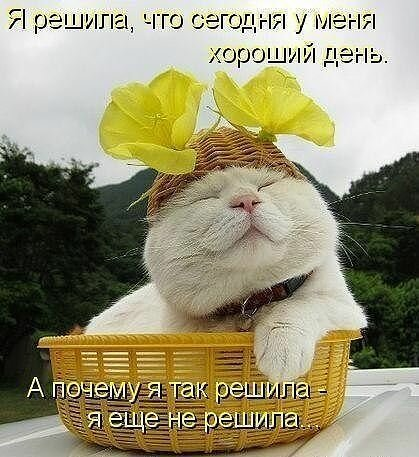 http://img-fotki.yandex.ru/get/6426/78082747.5e/0_b23c2_e1579dc1_L.jpeg.jpg