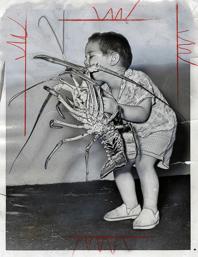 Little 2,5 -year old Brian Teller hefts a 5-pound crawfish landed by his father of the coast of Miami, Florida