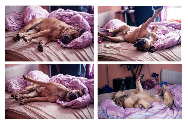 Смотреть онлайн девушке лежа на спине задрал ноги и трахнул 18 фотография