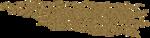 jsn_round4_mopb_glitter.png