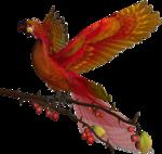 feli_l_fire bird2.png