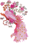 61788772_Myst2____pink_peacock_eunice_Sm.png