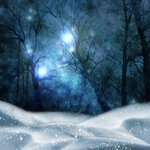 adika_snow_forest_pp_freebie_addon (1).jpg