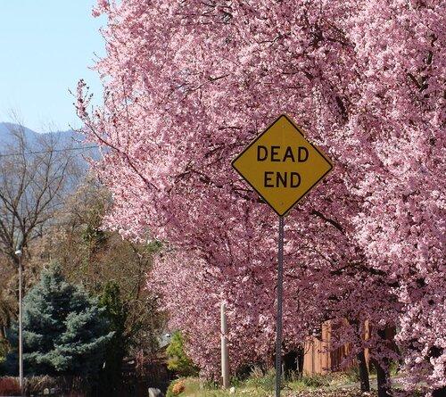 Весенний тупик