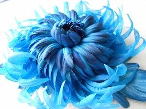 Астры и хризантемы - Страница 7 0_a419a_59dac19a_M
