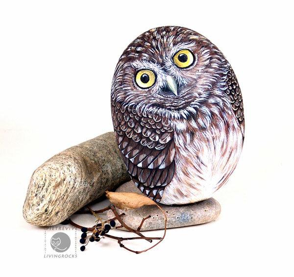 изображение совы на камне